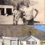 Cherry Tree 1950s vs. 2011