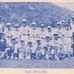 1965 Elk Antlers