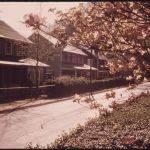 Holden, WV  1974