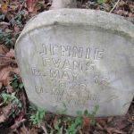 Jennie Evans