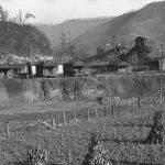 1935 Williamson, West Virginia
