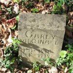 Virgina L. Carey