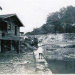 1938 Fisher Bottom and Island Creek