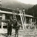 1920 African-American Construction Workers and a Mule, Rum Creek Junction, W. Va.