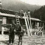 1920 Rum Creek, Logan County, WV