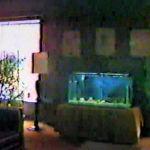 Aracoma Hotel Lobby Fish Tank 1988