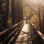 Henlawson RR Bridge taken Lisa Peyton