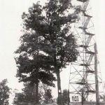 Blair Mountain Fire Tower