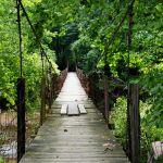 Swinging Bridge in Boone County.