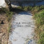 M. B. Mullins