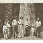 1938 Mingo Oak