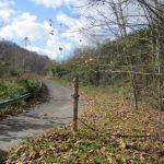 Mounts Cemetery Entrance